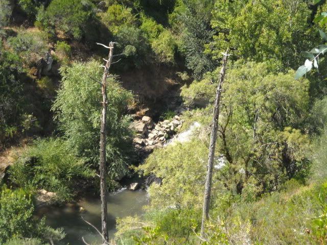 Barragem Castelo de Bode - 23/07/2011 - Em busca do Crocodilo que virou peixe gato DSCN5411