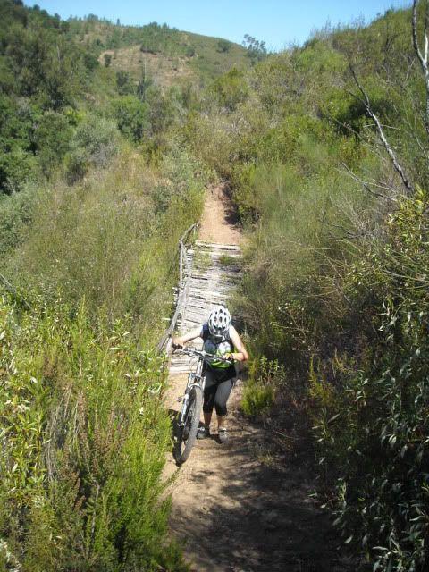 Barragem Castelo de Bode - 23/07/2011 - Em busca do Crocodilo que virou peixe gato DSCN5427