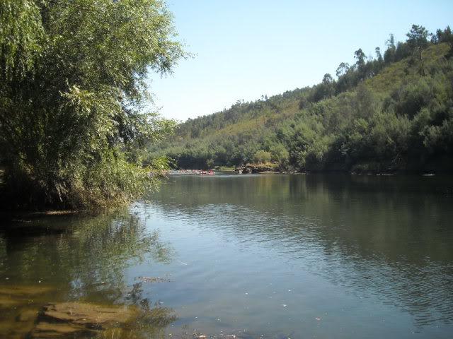 Barragem Castelo de Bode - 23/07/2011 - Em busca do Crocodilo que virou peixe gato DSCN5432
