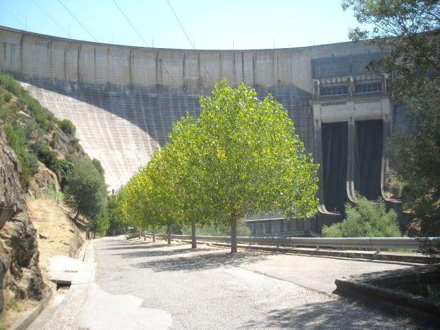 Barragem Castelo de Bode - 23/07/2011 - Em busca do Crocodilo que virou peixe gato DSCN5439