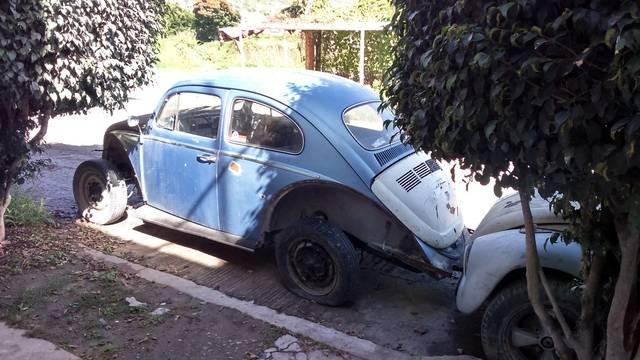 Nuevo proyecto VW 1969 DSC_0594_zpsxkcdmucp