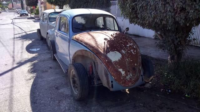 Un nuevo escarabajo llegó a casa DSC_0596_zps9ymdapkc