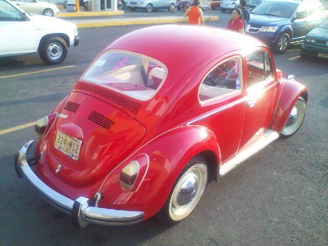 Un nuevo escarabajo llegó a casa F05-0110202_zpsgct94tdy