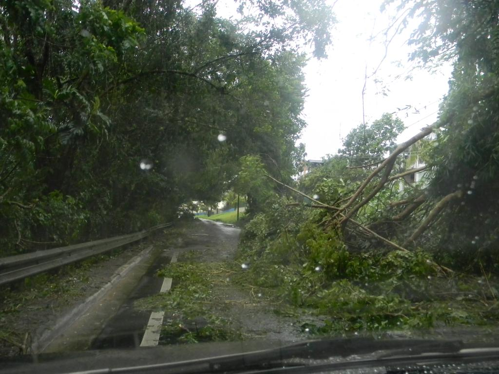 Huracán Irene Deja su huella en San Lorenzo, Puerto Rico Tormenta-Huracan1Irene032