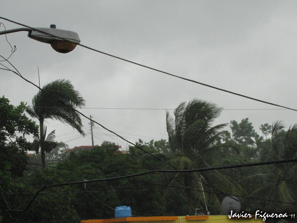 Huracán Irene Deja su huella en San Lorenzo, Puerto Rico VientosIMG_0413copy