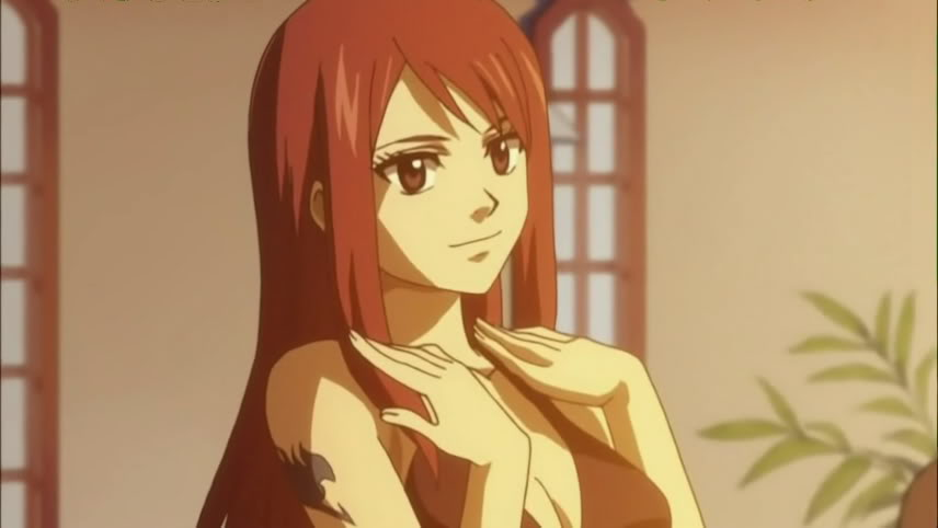 Vizard Corps: A new Beginning? (IMPORTANT PRELUDE) 233789-erza_picture_05