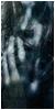 Foro gratis : Black Dagger Brotherhood-Argentina - Portal Huntersbrotherhoods