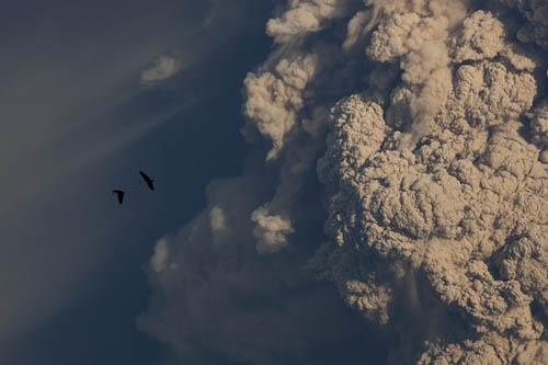 Fotos de la erupción del volcán Puyehue Puyehue07a