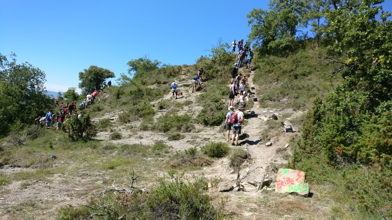 Rc4wD Summer Macro Event Spain 17/06/17 IMG_20170617_113112_zpsmbeqryv0