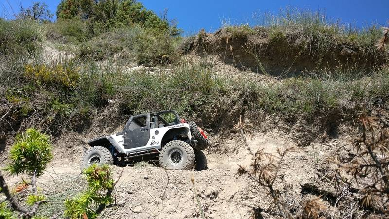 Rc4wD Summer Macro Event Spain 17/06/17 IMG_20170617_125342_zps2ttoeg1r