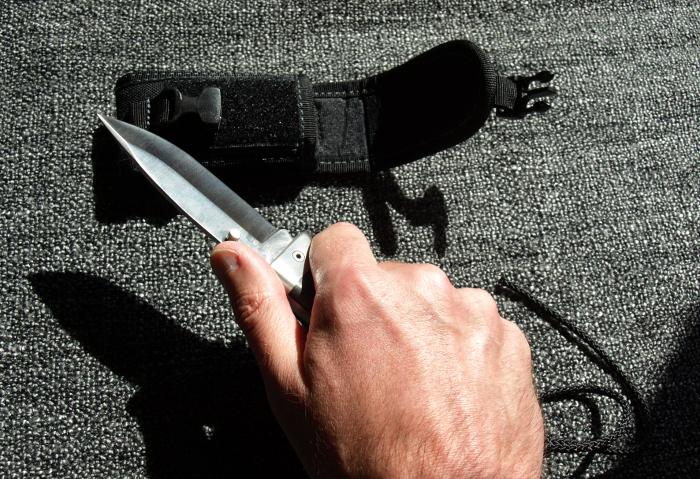 Nuevos cuchillos recién adquiridos (cudeman 127s, 177s, ...) Mt46asidaescalada_zps3cfb0733