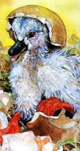 yo te elijo a ti.......... Duck2