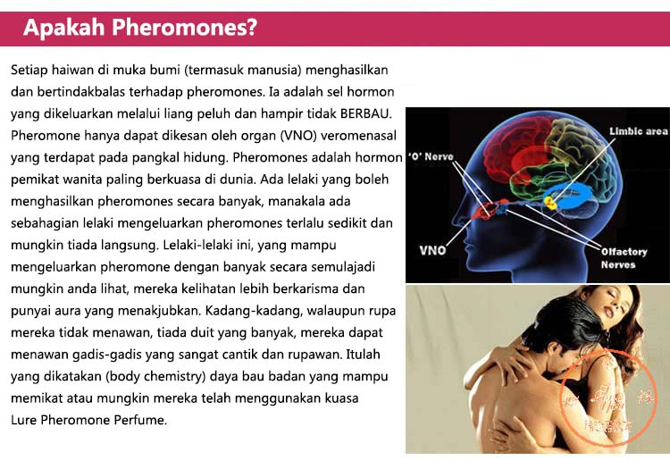Lure For Him    Pheromones   Semburan Pengoda   Wangian Cinta Lure2_zpsawnrkpme