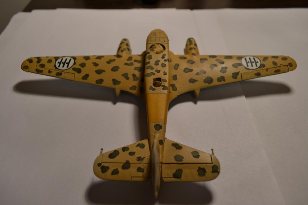 Caproni CA. 313  1/72  Italeri DSC_0320_zpsfa1eb592
