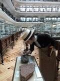 Científicos en el museo (1900-1907).30 de Noviembre del 2013. Madrid Th_P1080553_zps1313c15a