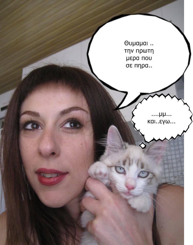 """Οι """"μαύρες"""" σκέψεις μιας γάτας... Μήπως η γάτα έχει κάτι να μας πει; - Σελίδα 18 2_zps6aded0d4"""