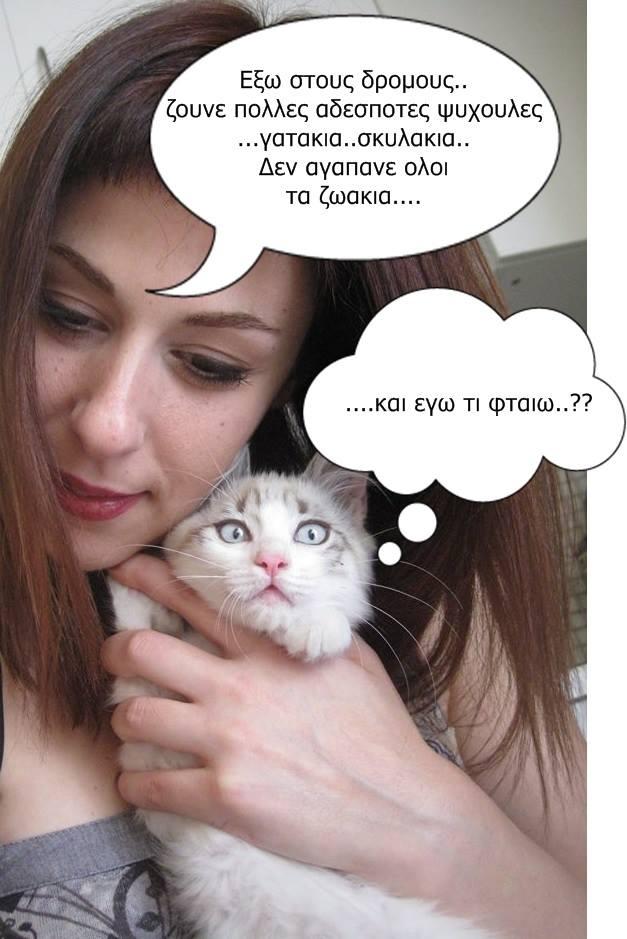 """Οι """"μαύρες"""" σκέψεις μιας γάτας... Μήπως η γάτα έχει κάτι να μας πει; - Σελίδα 18 4_zpscff4a911"""
