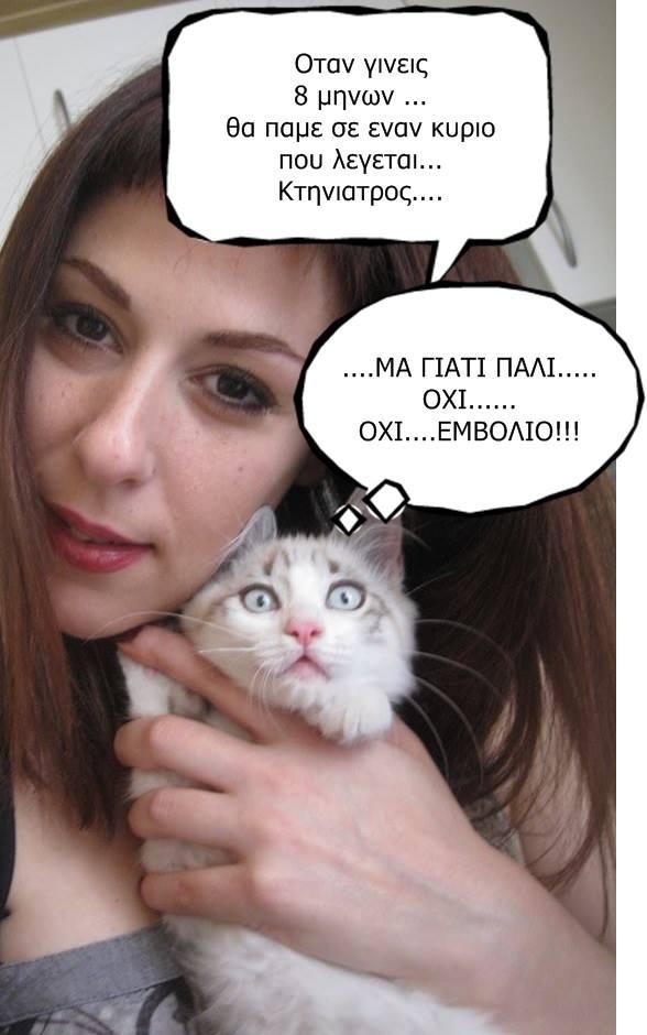"""Οι """"μαύρες"""" σκέψεις μιας γάτας... Μήπως η γάτα έχει κάτι να μας πει; - Σελίδα 18 6_zpsfc61e20b"""