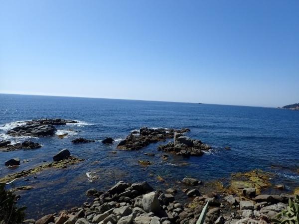 Un paseo bichero por el algario litoral 3b4e266f-61e4-415d-80e7-764e3cc2d474_zpsvzkcrmdt