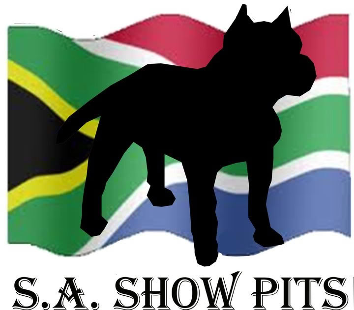 S.A Show Pits