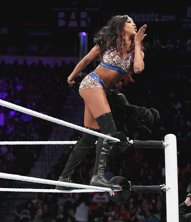 NXT & WWE Superstars Digitals - August 21st 2014 SS2_zpsa84e5338