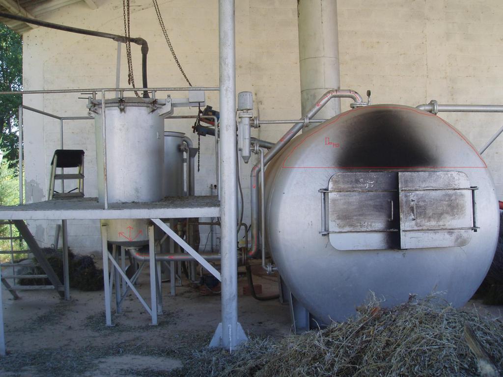 Destilado de plantas aromáticas y medicinales 2-1