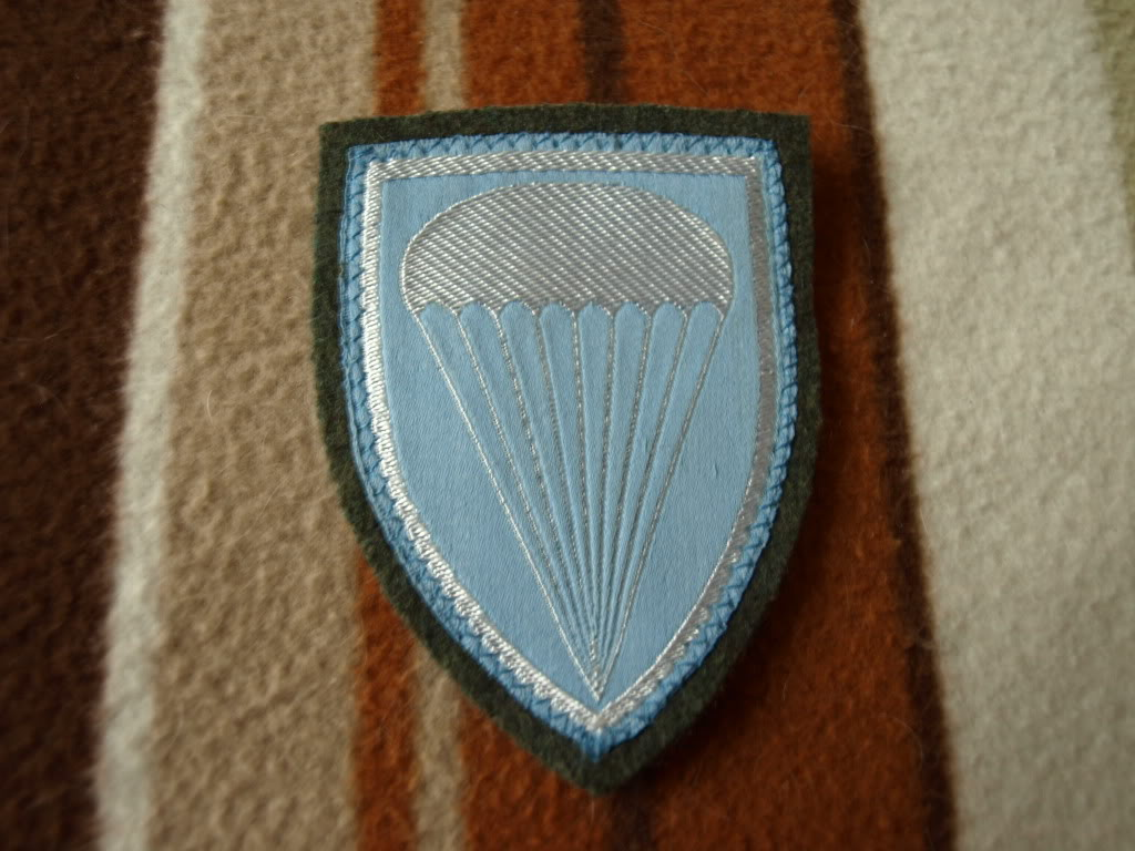 paratrooper beret badge P1129964