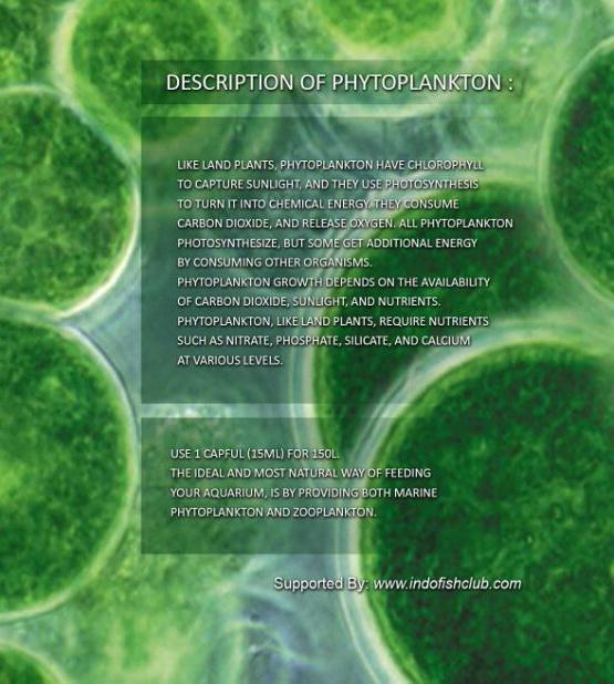 >> Live Rotifers & Live Phytoplankton BRC© << IMG_20150413_105122_zpsyvx7n0sk