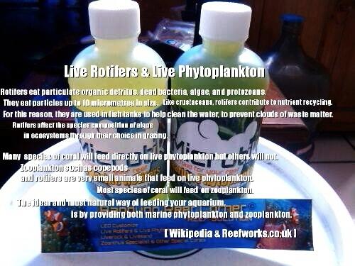 >> Live Rotifers & Live Phytoplankton BRC© << Image-1428385045961_zpsokcjotxq