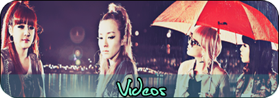 Asia Style Videos-1_zps64265548
