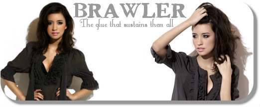Tonight, We Are Young. Brawler