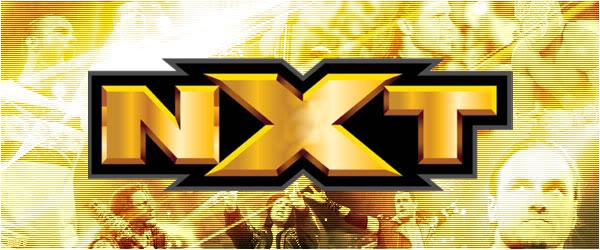 Carte NXT  du 01 Janvier 2013 Nxt1