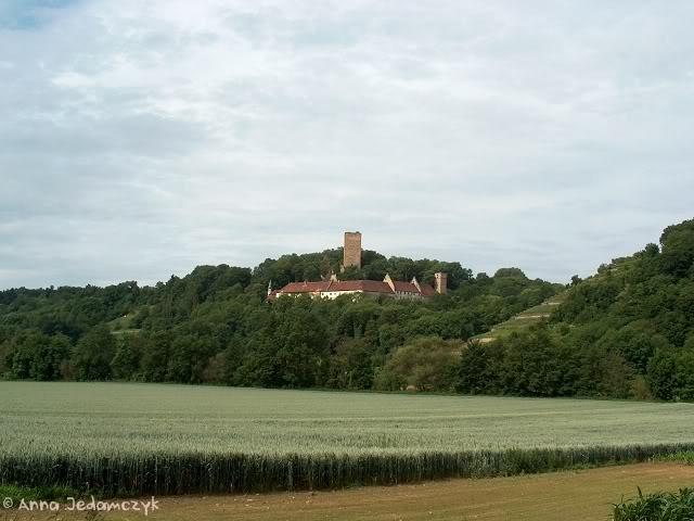 Burg Guttenberg und die Greifvogelwarte K-HPIM6886