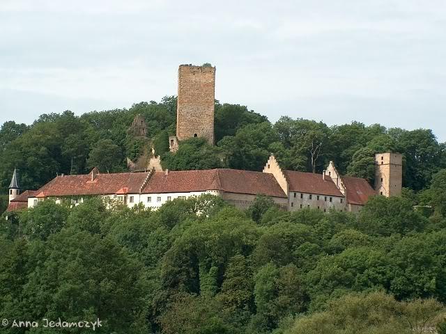 Burg Guttenberg und die Greifvogelwarte K-HPIM6887