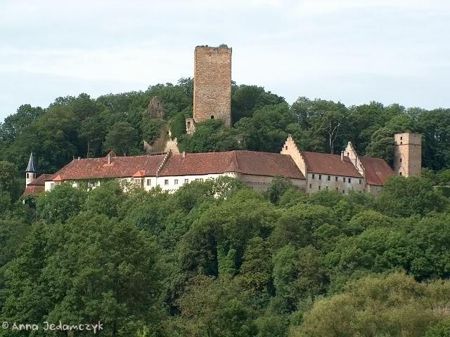 Burg Guttenberg und die Greifvogelwarte K-HPIM6888