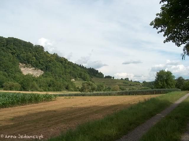 Burg Guttenberg und die Greifvogelwarte K-HPIM6890