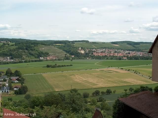 Burg Guttenberg und die Greifvogelwarte K-HPIM6958