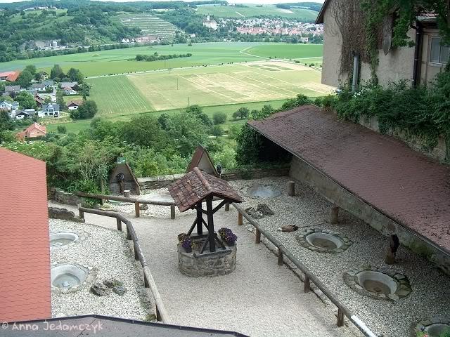Burg Guttenberg und die Greifvogelwarte K-HPIM6959