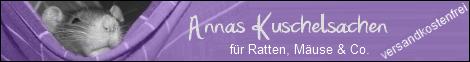 PLZ 38... Mäusegeschwister suchen neue Bleibe Versandkostenfrei