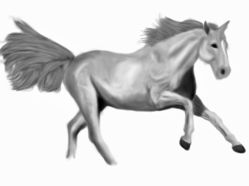 Any artist here? Horse