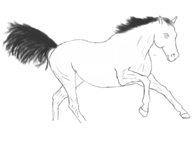 Any artist here? Horse2