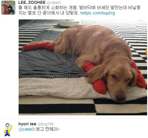 [Twitter][2013] Cô Tiên và góc vắng lặng gió {23/12 - 30/12 UPDATE} 301_zps8e260f2d