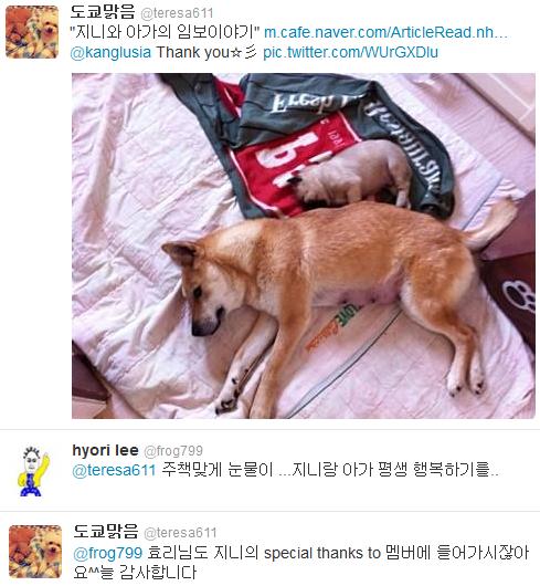 [Twitter][2013] Cô Tiên và góc vắng lặng gió {23/12 - 30/12 UPDATE} 305_zps7c5ed2d4