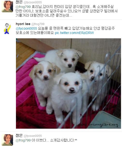 [Twitter][2013] Cô Tiên và góc vắng lặng gió {23/12 - 30/12 UPDATE} 306_zps95db2f58