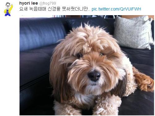 [Twitter][2013] Cô Tiên và góc vắng lặng gió {23/12 - 30/12 UPDATE} 307_zpsa1eea9f8