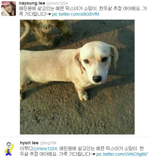 [Twitter][2013] Cô Tiên và góc vắng lặng gió {23/12 - 30/12 UPDATE} 311_zps9f34a3f5