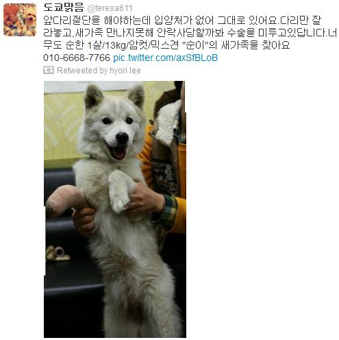 [Twitter][2013] Cô Tiên và góc vắng lặng gió {23/12 - 30/12 UPDATE} 315_zpsadb6cb93