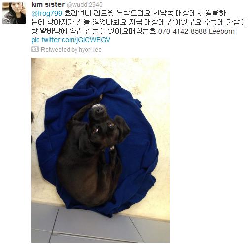 [Twitter][2013] Cô Tiên và góc vắng lặng gió {23/12 - 30/12 UPDATE} 322_zps823d0b62