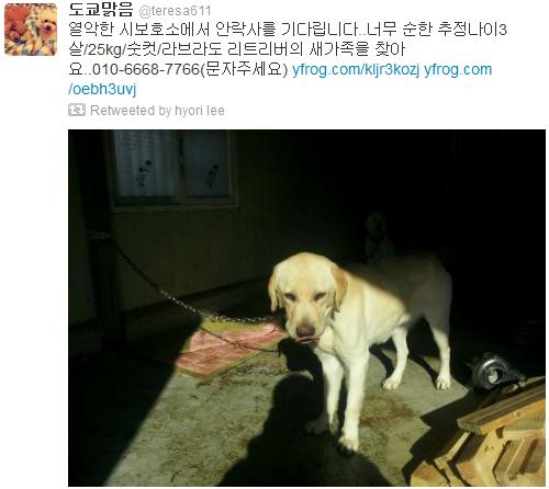 [Twitter][2013] Cô Tiên và góc vắng lặng gió {23/12 - 30/12 UPDATE} 323_zps9d32e1dc