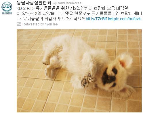 [Twitter][2013] Cô Tiên và góc vắng lặng gió {23/12 - 30/12 UPDATE} 325_zpseb828728